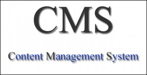 CMS website, manage website, website designing